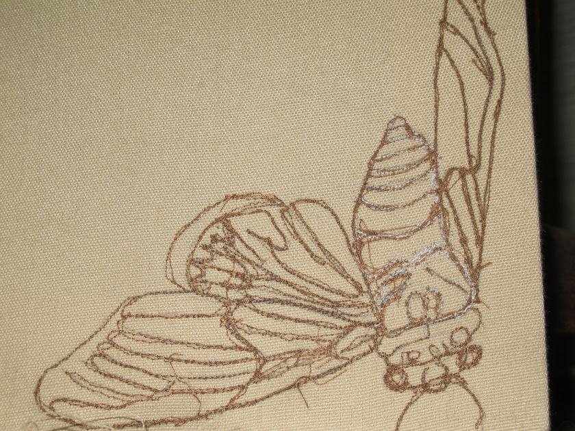 Insectile Embroidery2